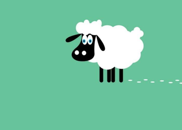 Kawaii sheep wallpaper
